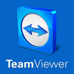 Установить TeamViewer Portable